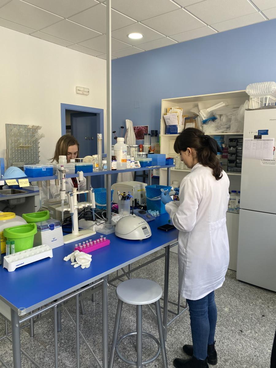 Imagen del personal de Ampligen trabajando en el laboratorio realizando pruebas de ADN