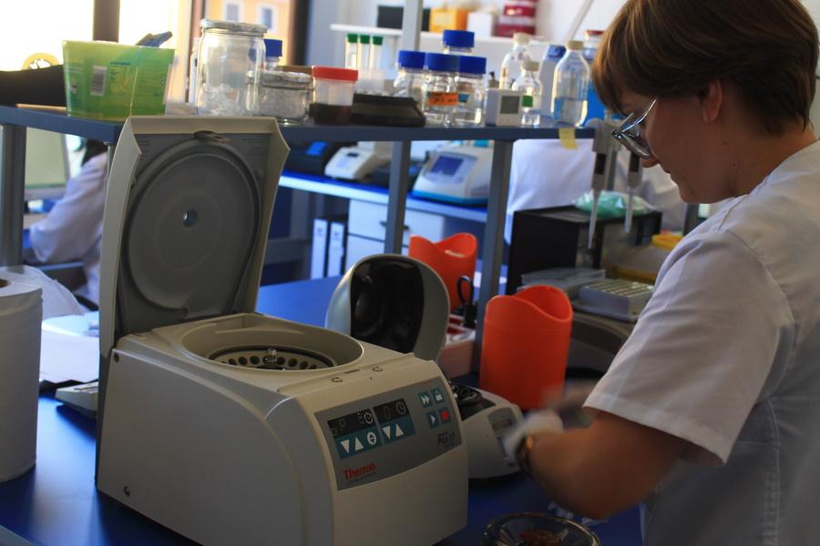Imagen del laboratorio Ampligen con personal trabajando en procesos de análisis de ADN como en las pruebas de paternidad privadas